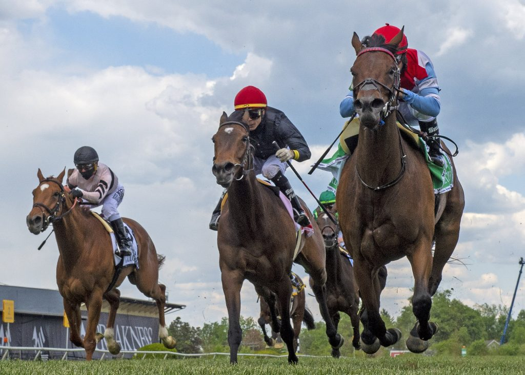 Mean Mary Horse racing